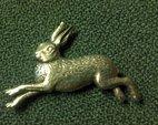 Tennbrosch hare